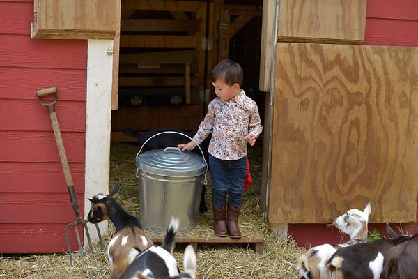 092520_BEHRENS_Hobby Farm