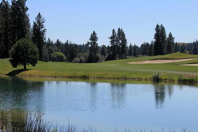 #8 Fairway, The Creek at Qualchan GC,  Spokane, Wa