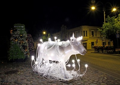 Illuminated Cows