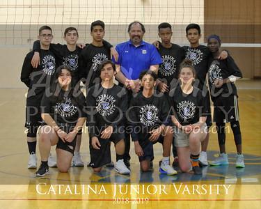 2019 catalina boys volleyball