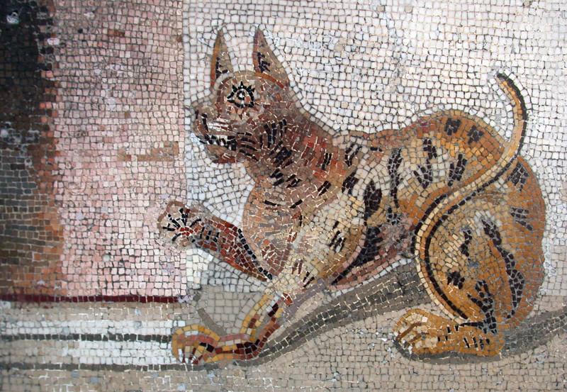 mosaiccat.jpg