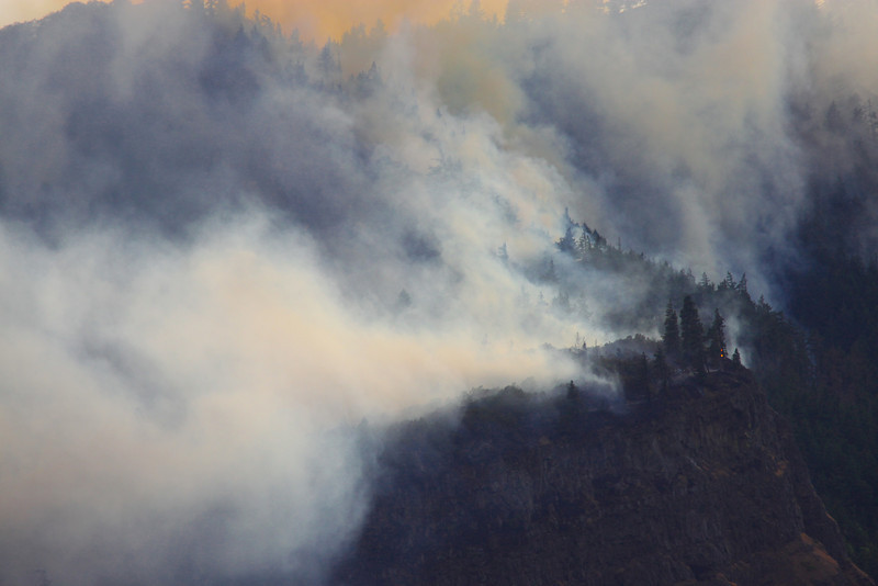 forest fire-10
