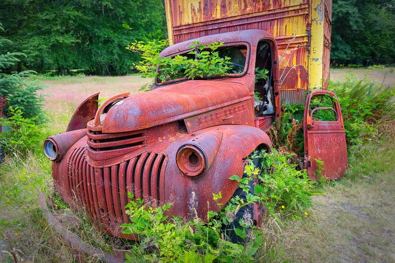 ~Rust Bucket~