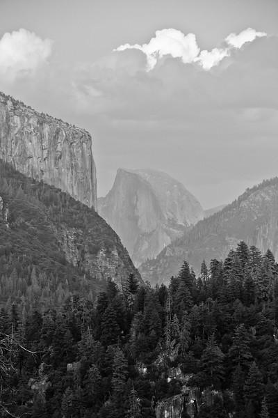 Yosemite National Park (08-2016)