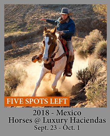 09-23-18 MexicoHorses