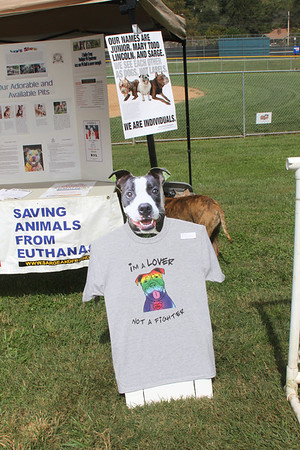 Bark in the Park 2012 Sylva NC