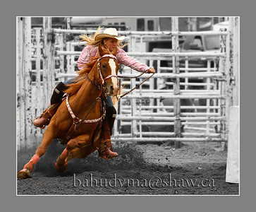 Rodeos 2010 thru 2018