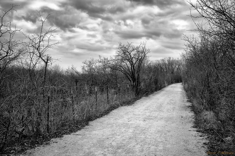 Renwick Trail