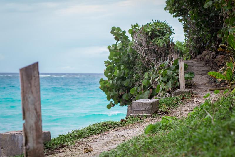 Ocean Path.jpg