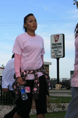 Making Strides Against Breast Cancer VIII