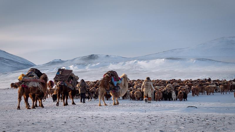Mongolia - 2020 -22.jpg