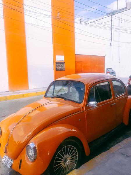 orange on orange.jpg