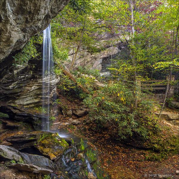 Window Falls, NC
