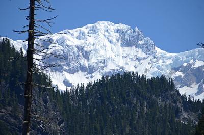 Mt. Rainier - 2013