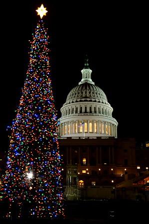 12-1-2010 Capitol Christmas Tree