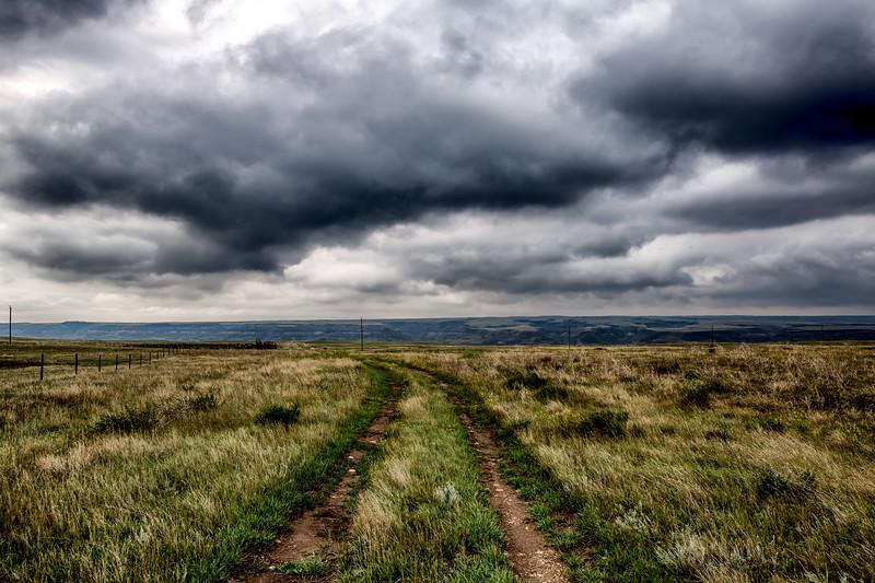 Grasslands to Badlands
