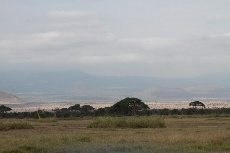 Kenya 2019 #2 582.JPG