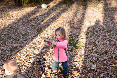 Leaves 2013