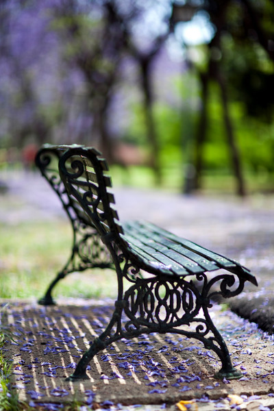 Empty bench in a park, Seville, Spain
