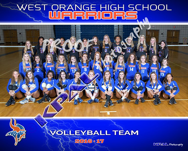2016-17 Girls Volleyball Team