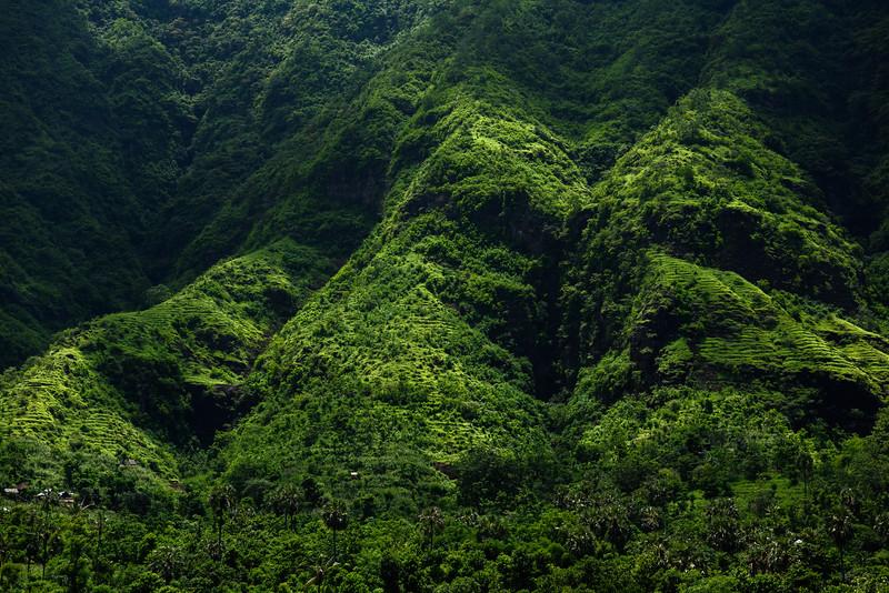 160222 - Bali - 3398.jpg