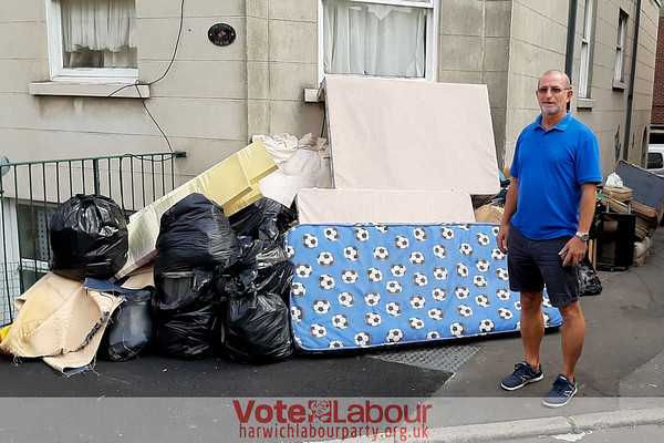 How much is fly tipping costing TDC?