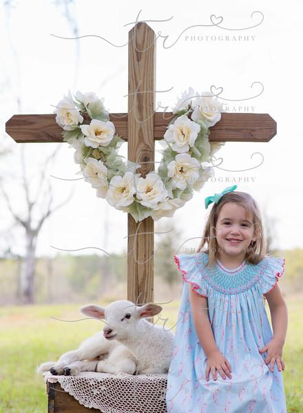 Adeline~Little Lamb