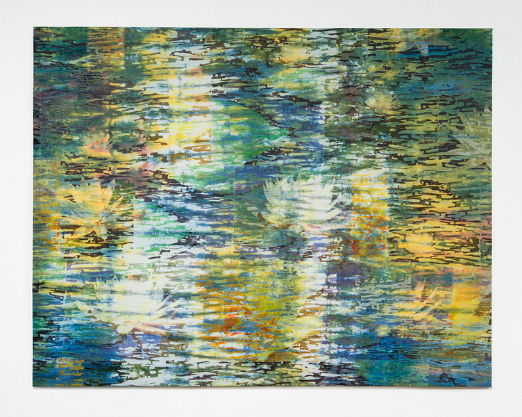 Lilly Pond I
