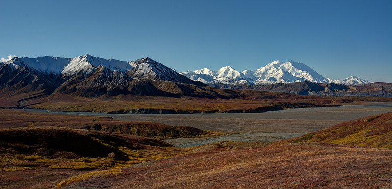Denali National Park 1