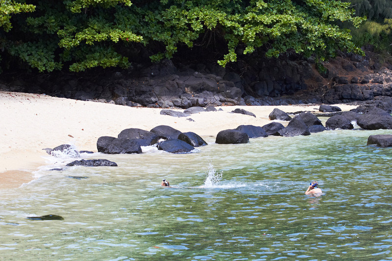 Hawaii890.jpg