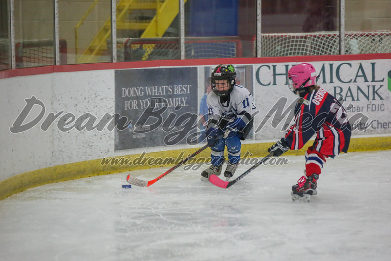 Blizzard Hockey 111719 7571.jpg