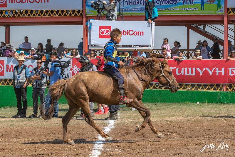 Horse racing__6109127-Juno Kim.jpg