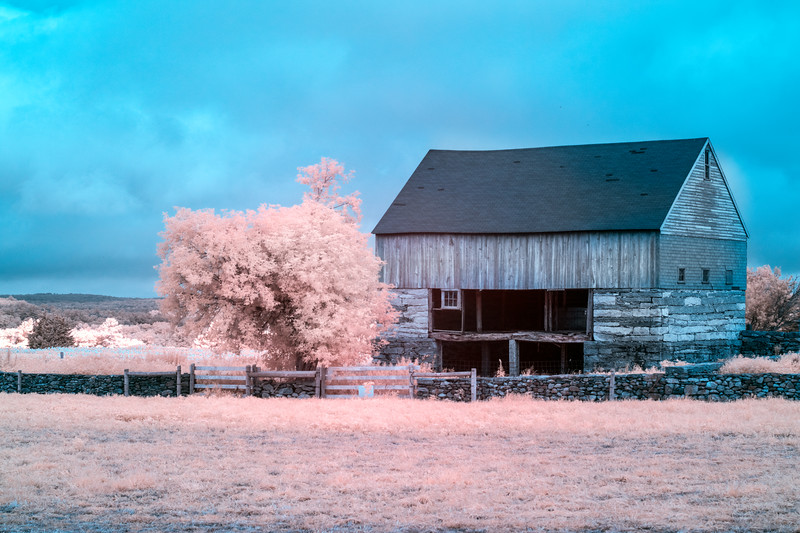 Buttonwood 2018 In Infrared