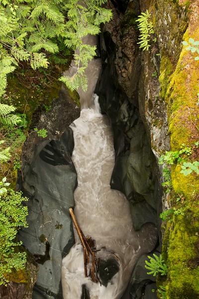 Box canyon of the Cowlitz River. Mt Ranier National Park, Washington.