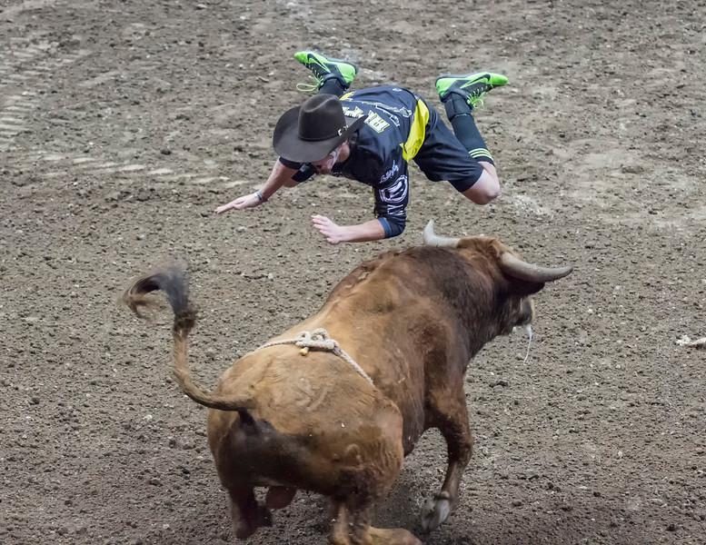 PBR Bull Fighters-15.jpg