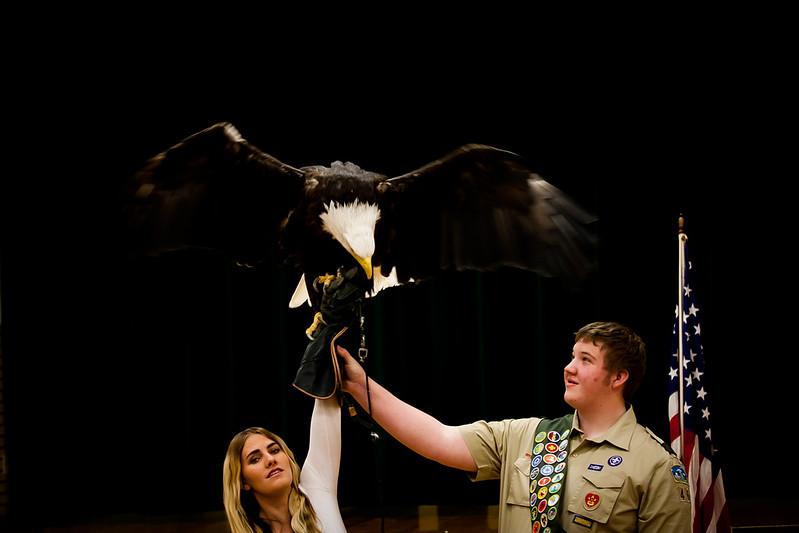 martin eagle-36.jpg