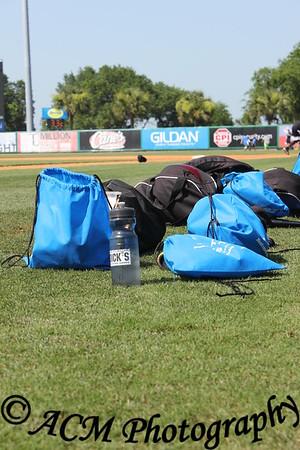Charleston Riverdogs Baseball Camp June 2015