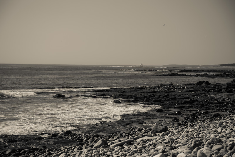 Seawall looking out at Western Way
