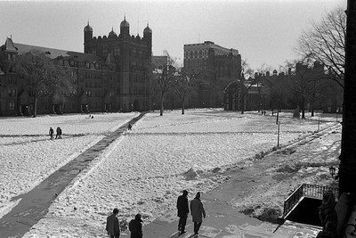 Yale College Life on the Old Campus 1973-4