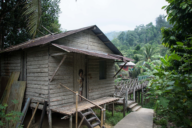 Borneo-2014-33.jpg