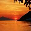 Sunset Swimmer