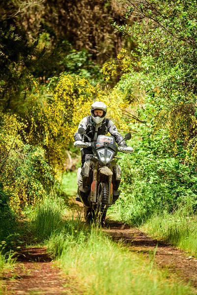 2019 KTM New Zealand Adventure Rallye (417).jpg