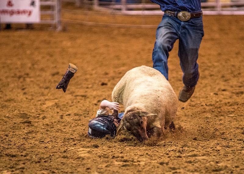 Rodeo_545.jpg