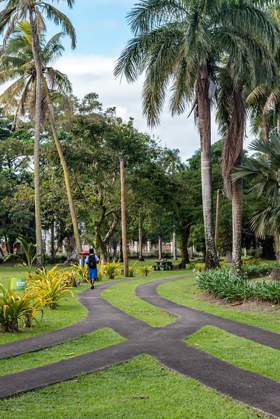 11 - Fiji - June '16.jpg