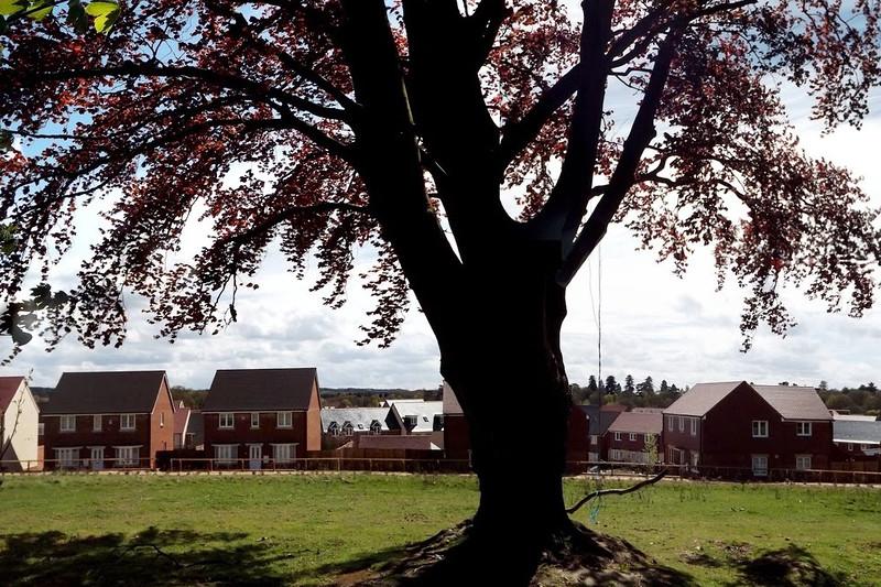 Jennet's Park, Bracknell