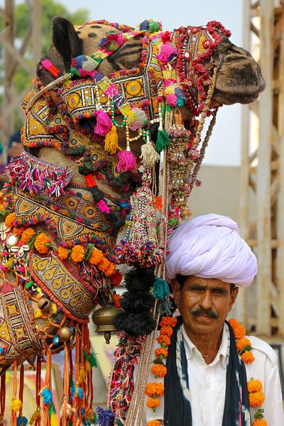 India-Pushkar-2019-9158.jpg