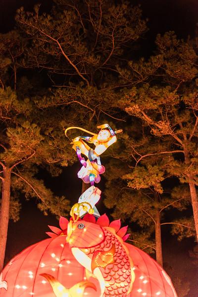 Chinese Lantern Festival-5274.jpg