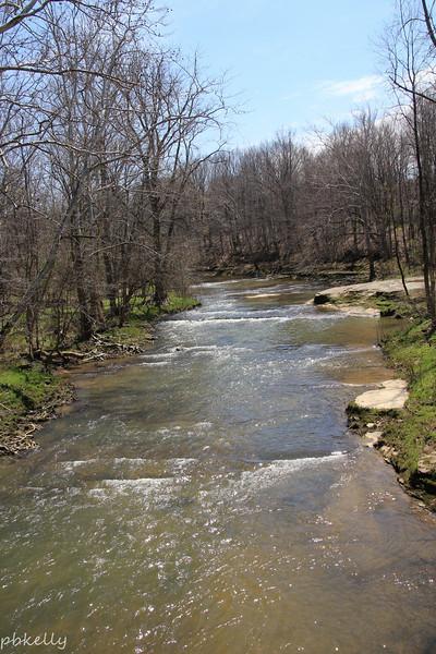 Black River 042714-3.jpg