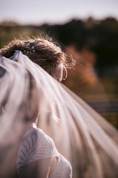 Cox Wedding-340.jpg