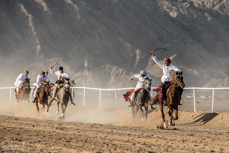 IMGL6795- Horse race.jpg